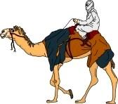 7442918-beduino-cavalcare-un-cammello-isolato-su-sfondo