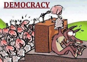 Democracy_20140112_Democracy